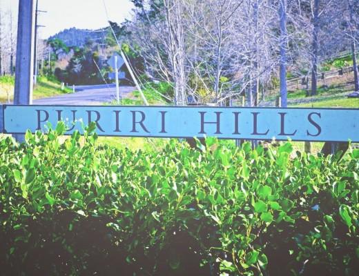 puriri_hills.jpg