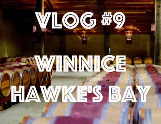 winnice_hawkesbay_cover
